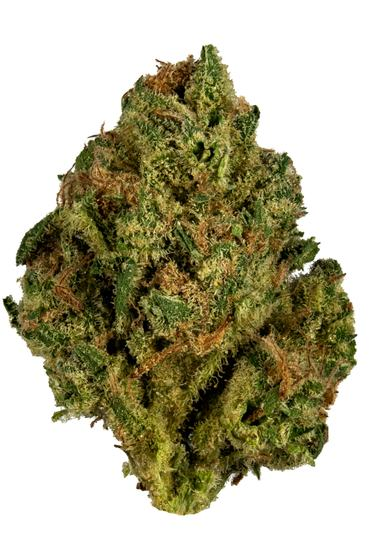 Long's Peak Blue - Hybrid Cannabis Strain