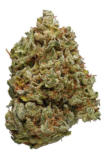 Loopy Fruit - Hybrid Cannabis Strain