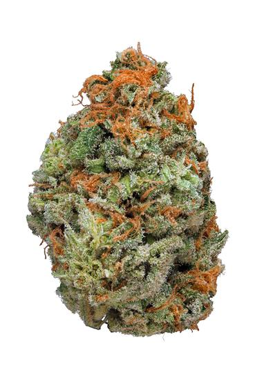 Mango Dream - Sativa Cannabis Strain