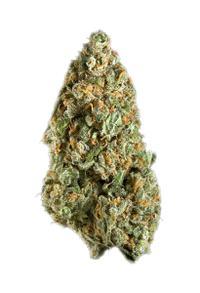Mango - Indica Cannabis Strain