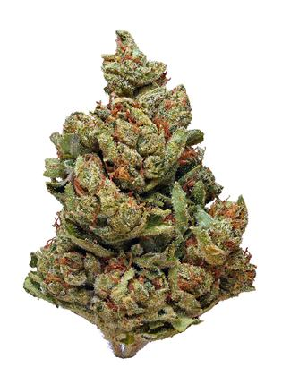 Mike Phelps - Hybrid Cannabis Strain