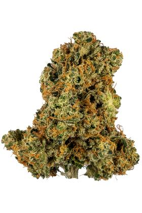 Miss X - Sativa Cannabis Strain