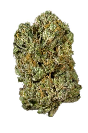 Money Maker - Indica Cannabis Strain