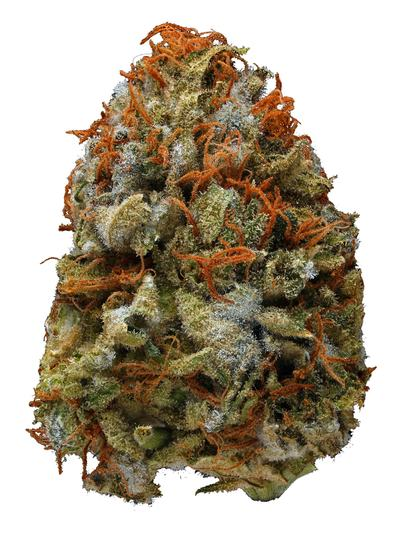 Monster OG - Hybrid Cannabis Strain