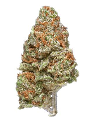 Moonshine Haze - Sativa Cannabis Strain