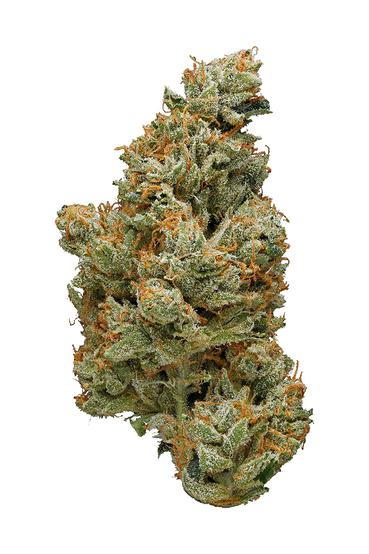 Mother Lode OG - Hybrid Cannabis Strain