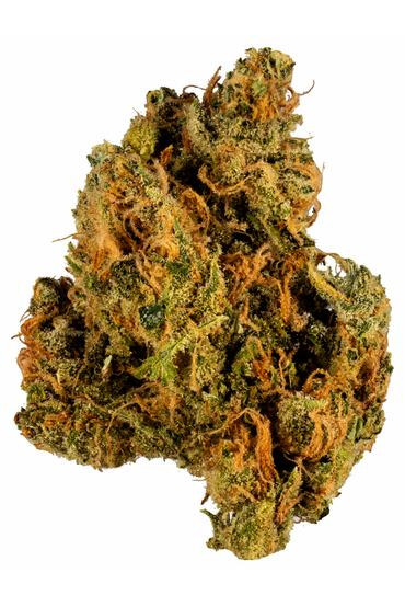 Mother's Milk - Hybrid Cannabis Strain