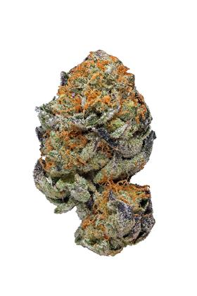 Naughty Girl Scout Cookies - Hybrid Cannabis Strain