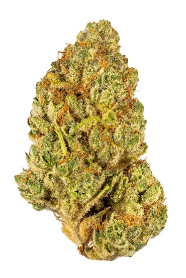 Nevada Power - Sativa Cannabis Strain