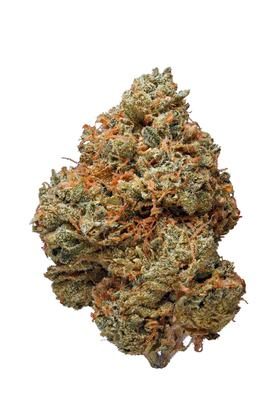 Night Terror OG - Indica Cannabis Strain
