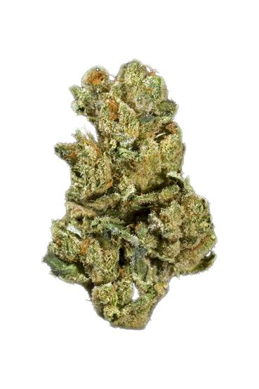 Nightfire OG - Sativa Cannabis Strain