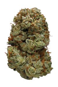 Northern Lights #5 - Hybrid Cannabis Strain