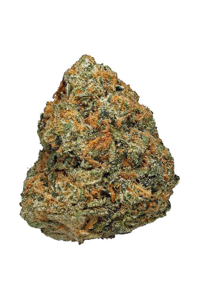 Orange Cookies Strain - Hybrid Cannabis Video, THC, Terpenes : Hytiva