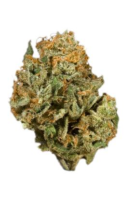 Orange Haze - Híbrido Cannabis Strain