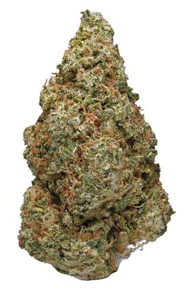 Orange Skunk - Hybrid Cannabis Strain