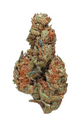Panama Red - Sativa Cannabis Strain