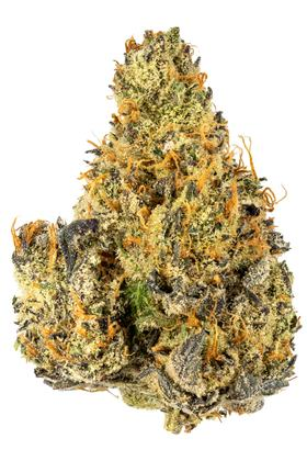 Peach Pie - Hybrid Cannabis Strain