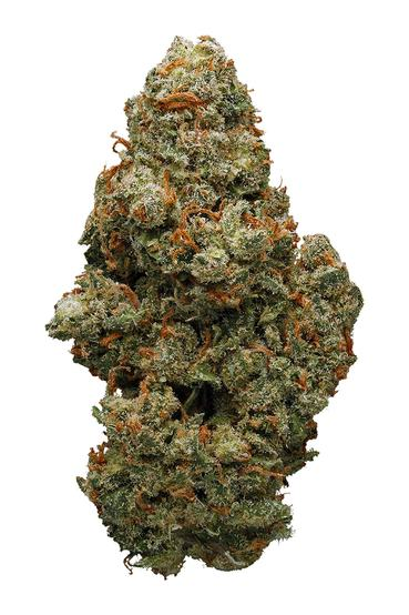 Pineapple Jack - Sativa Cannabis Strain