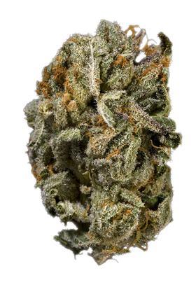 Platinum Kush Strain - Indica Cannabis Review, THC : Hytiva