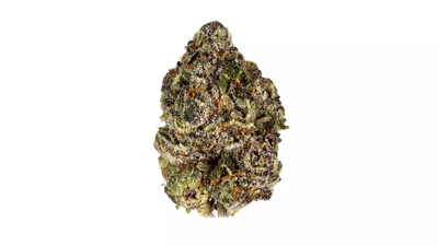 Platinum Purple - Indica Strain