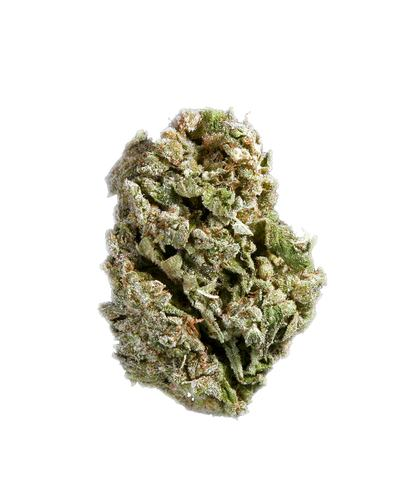 Platinum Truth - Hybrid Cannabis Strain