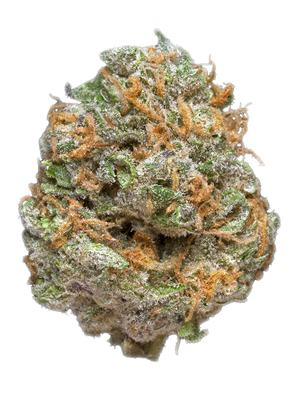 Purple AK-47 - indica Cannabis Strain