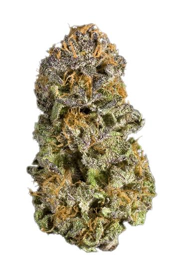 Purple Dream - Hybrid Cannabis Strain