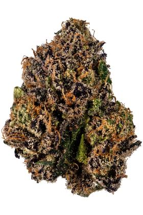 Purple Glue - Indica Cannabis Strain