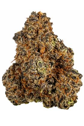 Purple Haze - Hybrid Cannabis Strain