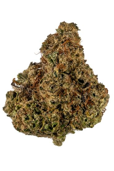 Purple Monkey - Indica Cannabis Strain