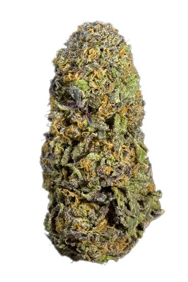 Purple Princess - Hybrid Cannabis Strain
