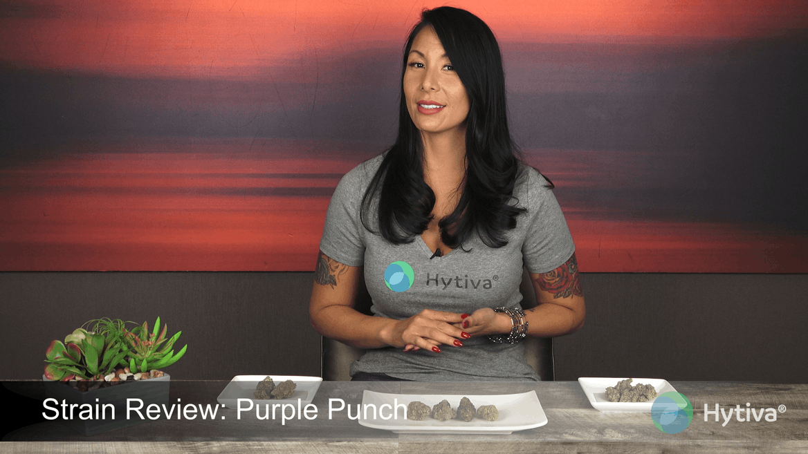 Strain review video: Purple Punch