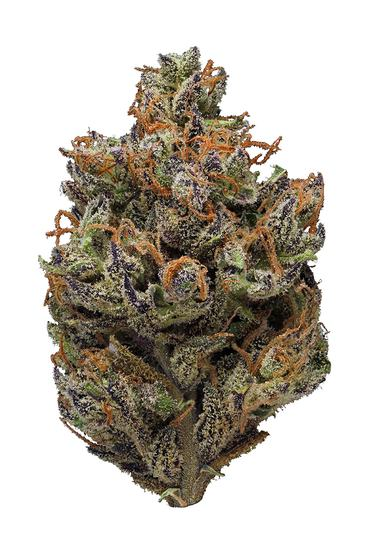 Purple Sticky Punch - Hybrid Cannabis Strain