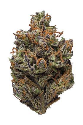 Purple Sticky Punch - Hybrid Cannabis Strain Information