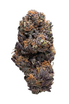 Purple Wheelchair - Hybrid Cannabis Strain