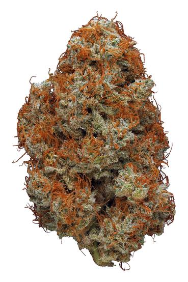 Red Berry - Hybrid Cannabis Strain