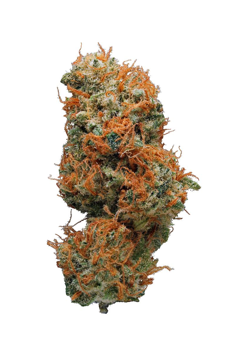 Hybrid Weed Reviews: Expert Review & Unboxing