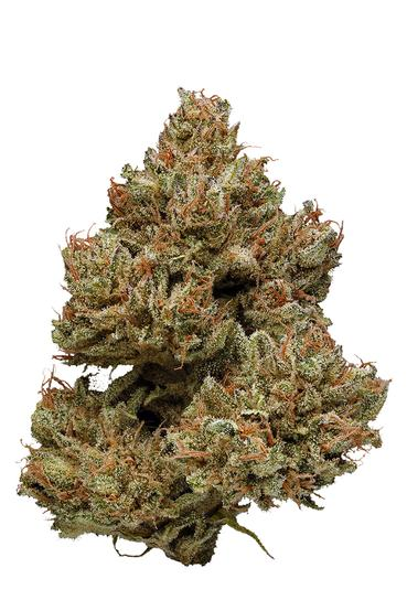 Remedy CBD - Hybrid Cannabis Strain