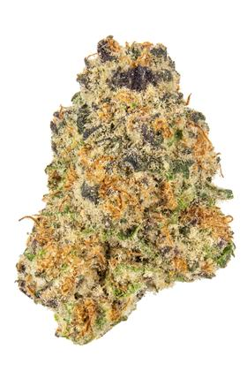 Ruggs Punch - Hybrid Cannabis Strain