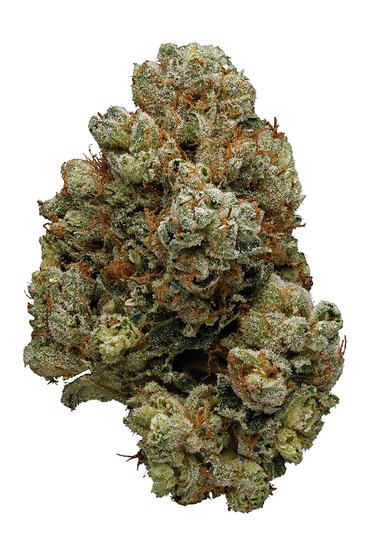 Russian Assassin - Indica Cannabis Strain