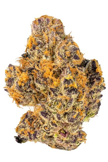 Scoops - Hybrid Cannabis Strain