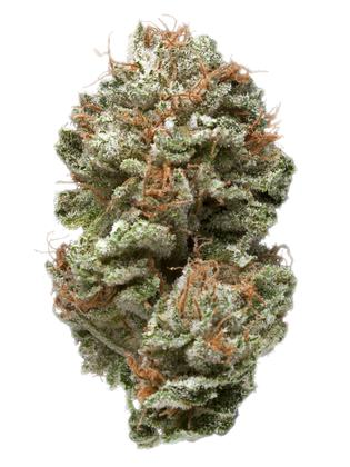 Secret Recipe - Híbrido Cannabis Strain