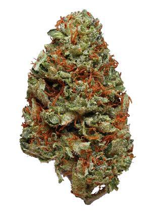 Sensi Skunk Strain - Indica Cannabis Review, THC : Hytiva