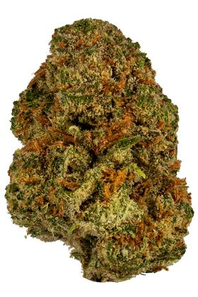 Sequoia Strawberry - Sativa Cannabis Strain