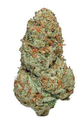 Shark Shock - Indica Cannabis Strain