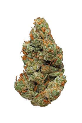 Skunk Dawg - Sativa Cannabis Strain