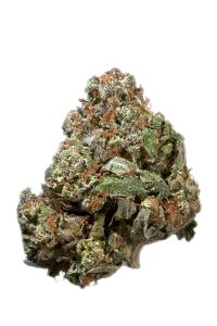 Skunk #1 - Hybrid Cannabis Strain