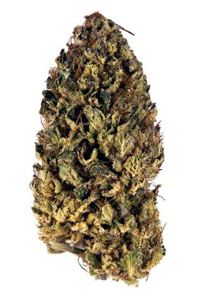 Skywalker - Indica Cannabis Strain