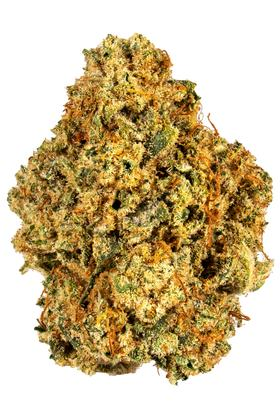 SoCal White Lightning - Hybrid Cannabis Strain