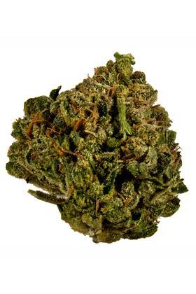 Sour Diesel OG Strain - Hybrid Cannabis Review, CBD, THC